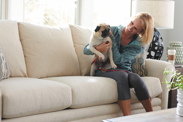 Best Furniture for Pets