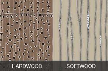 Hardwood vs Softwood Furniture